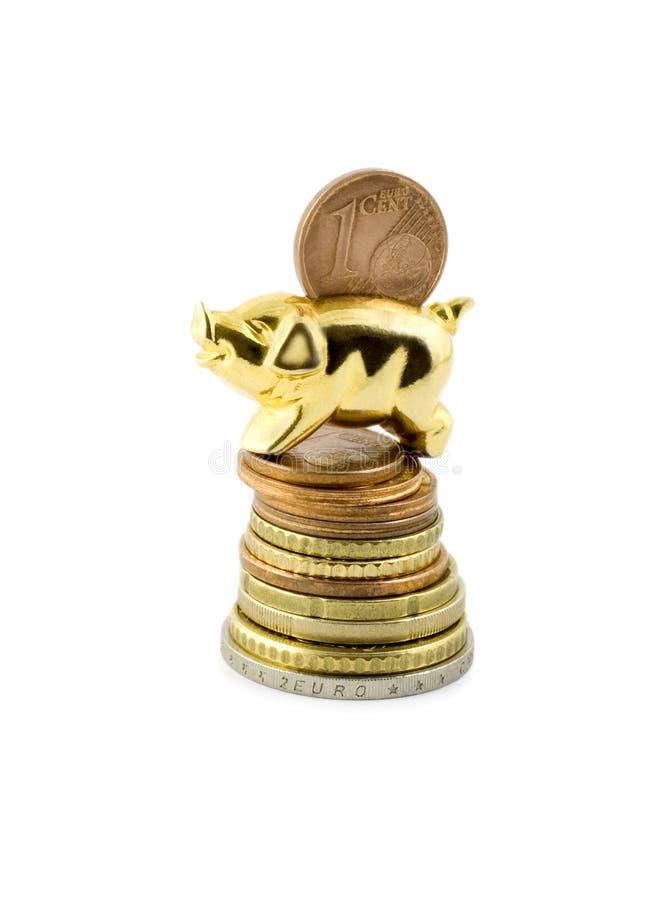 Porco na moeda da pilha imagem de stock