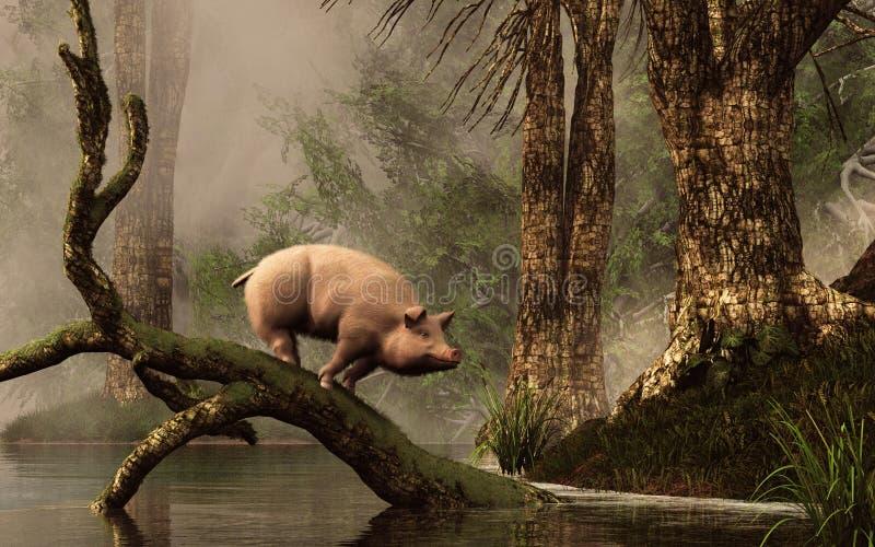 Porco perdido em uma floresta inundada ilustração do vetor