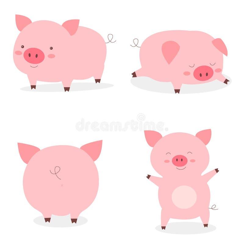 Porcos bonitos pequenos gordos ajustados O ano do porco Vetor engraçado dos porcos ilustração do vetor