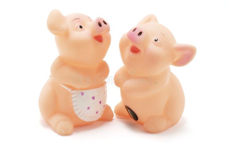Porcs en caoutchouc image stock