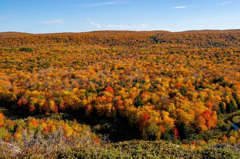 Porcupine Mountains Fall royalty free stock photo