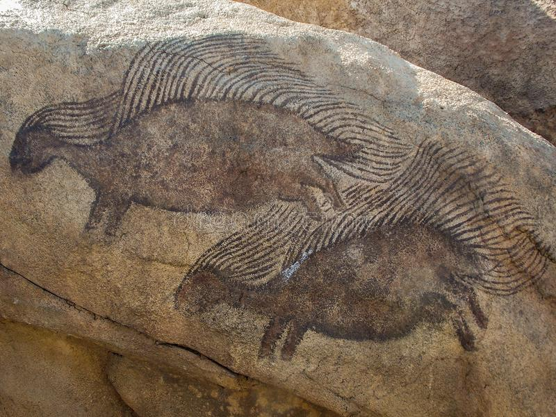 Porcupine Rock Drawings stock photography