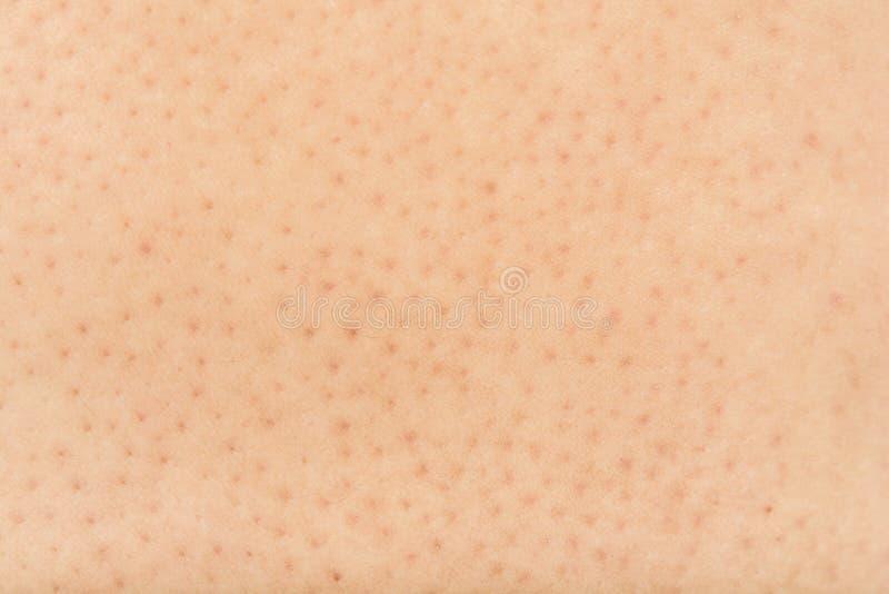 Pores na ciele w kobietach zdjęcia royalty free