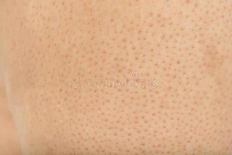Pores na ciele w kobietach fotografia royalty free
