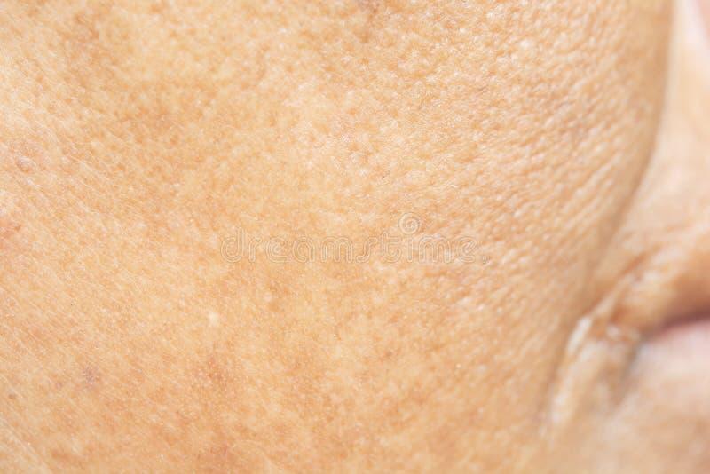 Pores na twarzy w kobietach zdjęcia stock
