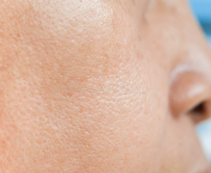 Pores na twarzy w kobietach obrazy royalty free