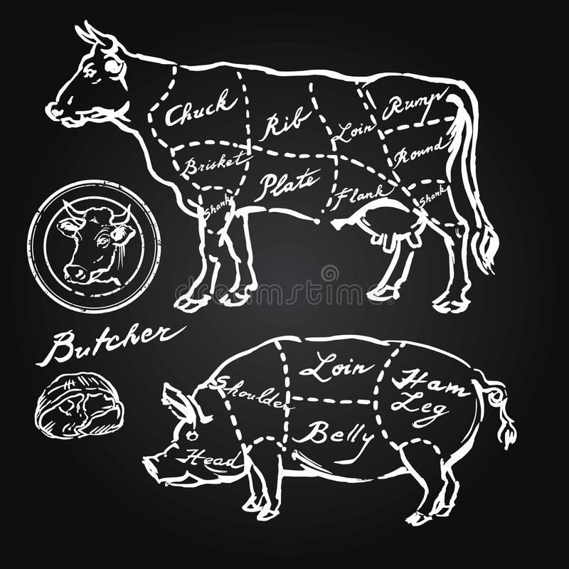 Pork and beef cuts stock illustration