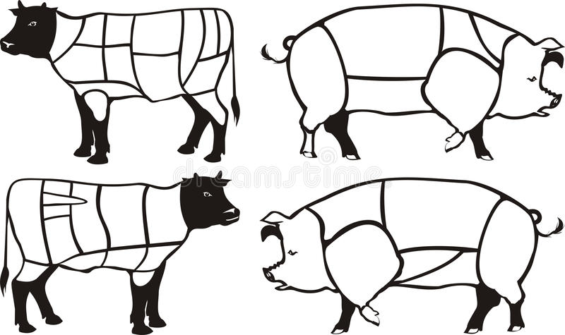 Download Pork & Beef Diagrams Royalty Free Stock Photography - Image: 18746257