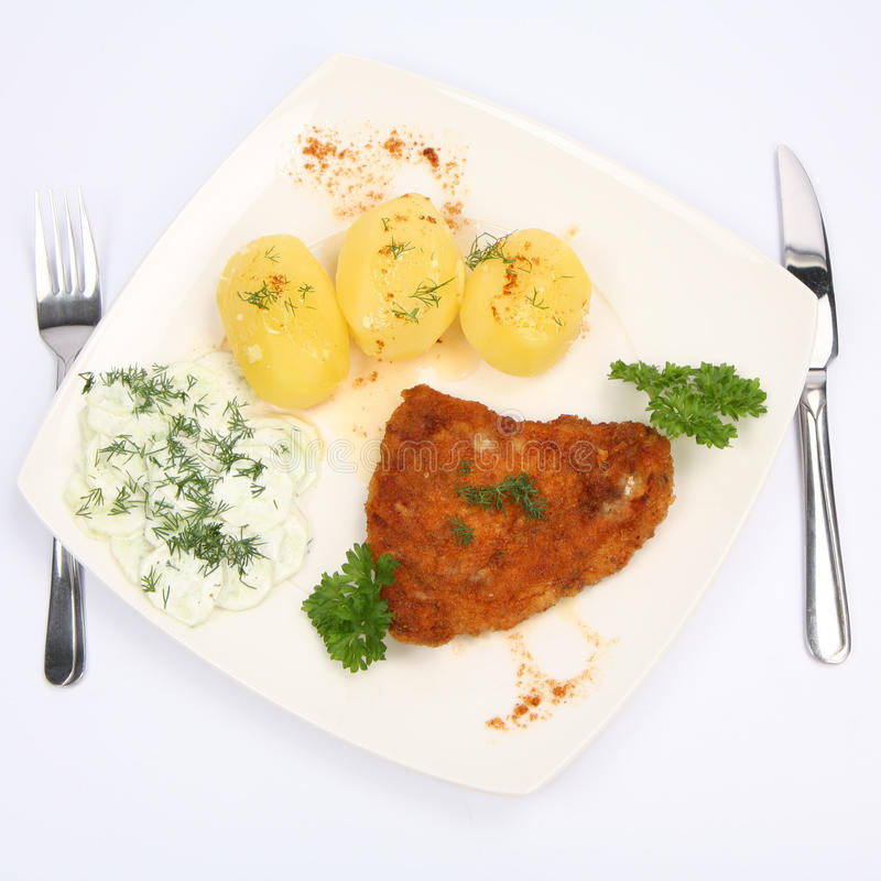 Download Pork Chop, Potatoes And Cucumber Salad Stock Image - Image of piece, dill: 14707529