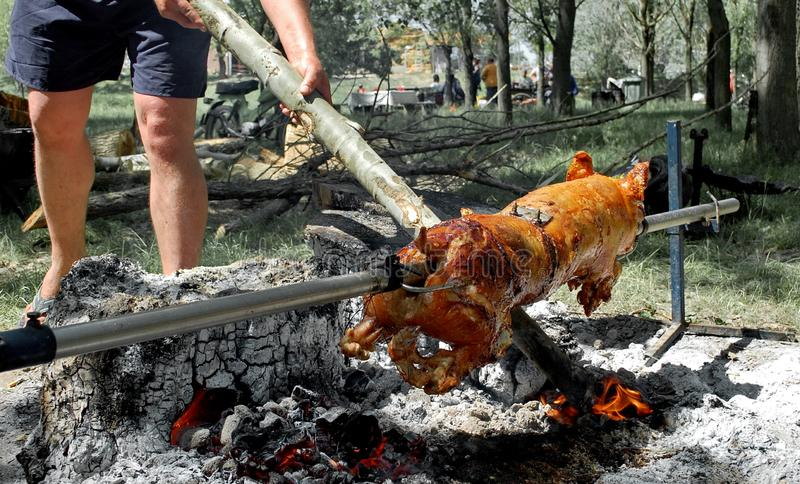 Pork grilled on fire. Colour photography of pork grilled on fire stock photos