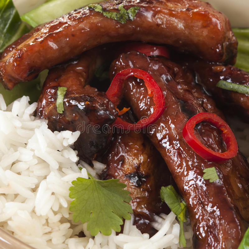 Download Pork Ribs with Rice stock image. Image of pork, sticky - 26441923