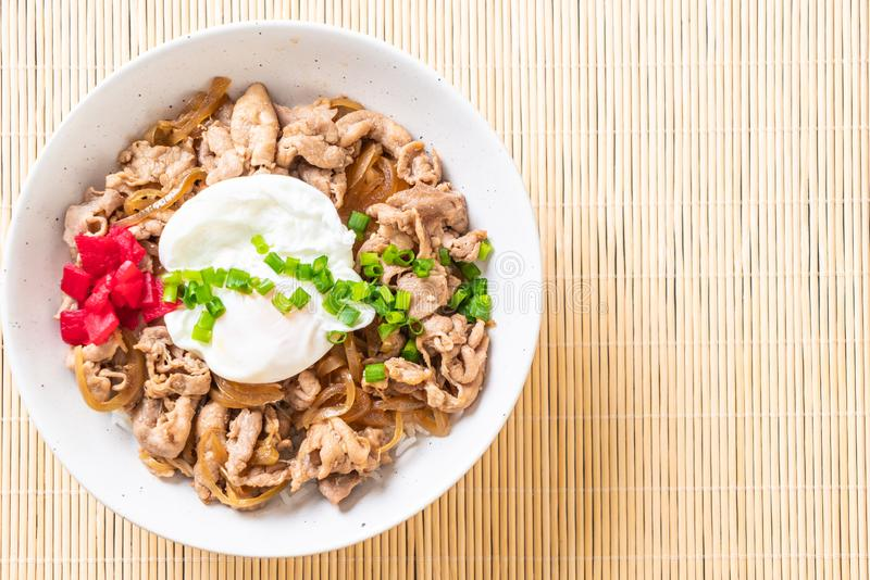 Pork rice bowl with egg (Donburi) - japanese food. Style stock photos