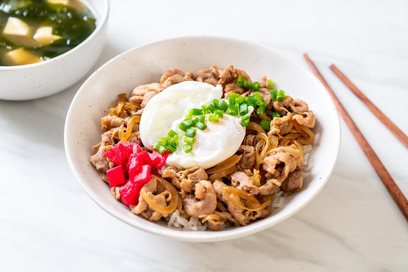 Pork rice bowl with egg (Donburi) - japanese food. Style royalty free stock image