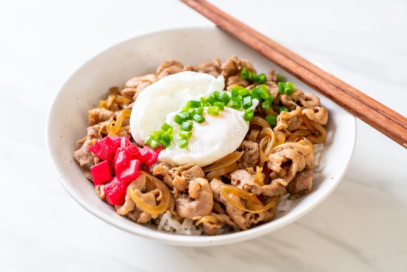 Pork rice bowl with egg (Donburi) - japanese food. Style royalty free stock images