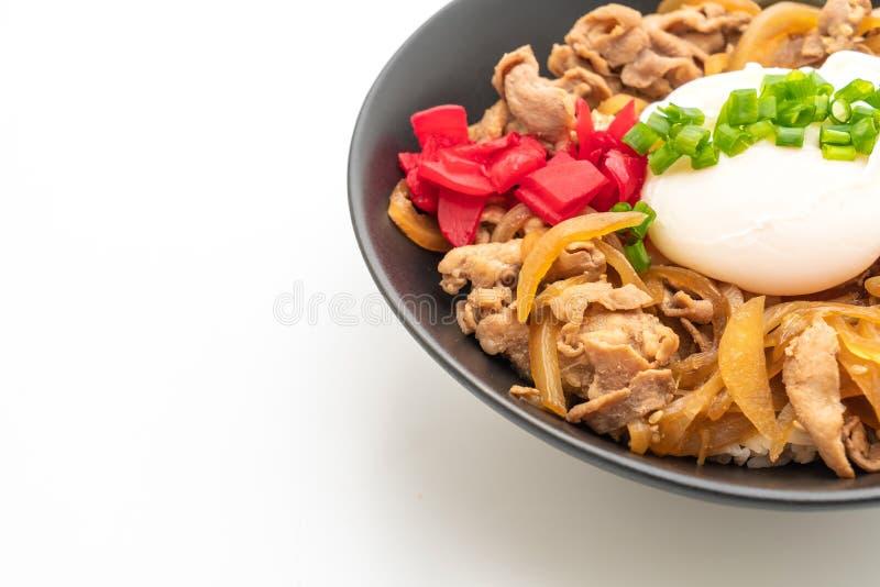 Pork rice bowl with egg (Donburi) - japanese food style. Pork rice bowl with egg (Donburi) isolated on white background - japanese food style stock image