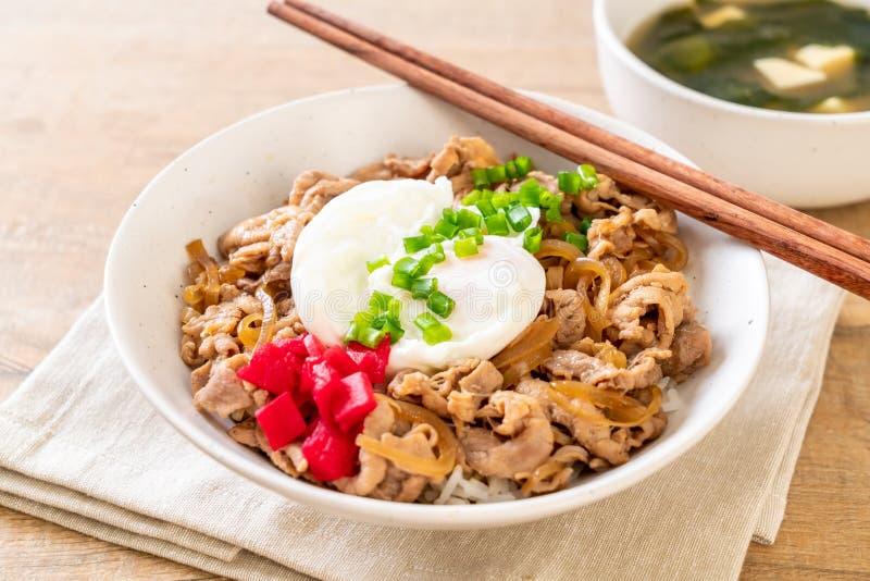 Pork rice bowl with egg (Donburi) - japanese food. Style stock photo