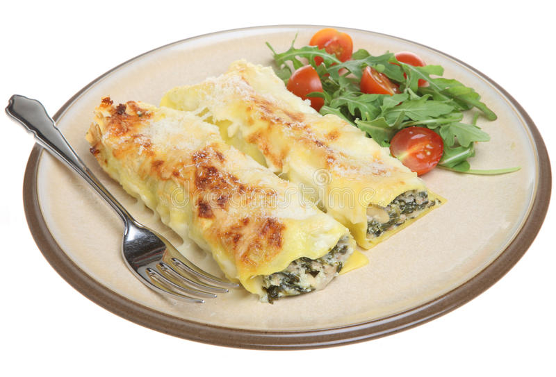 Download Pork & Spinach Cannelloni stock photo. Image of closeup - 15507602