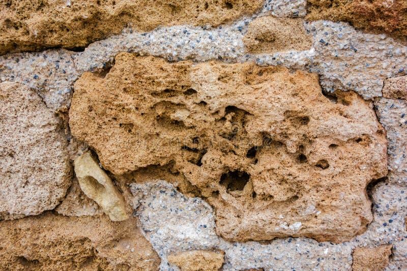 Porous natural stone. stock photography