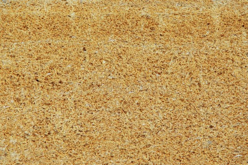 Porous stone texture. Rough weathered porous sandstone surface texture close up stock photo