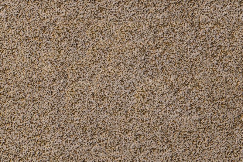 Porouse skurar sömlös bakgrund för textur, skumstenkalksten arkivbilder