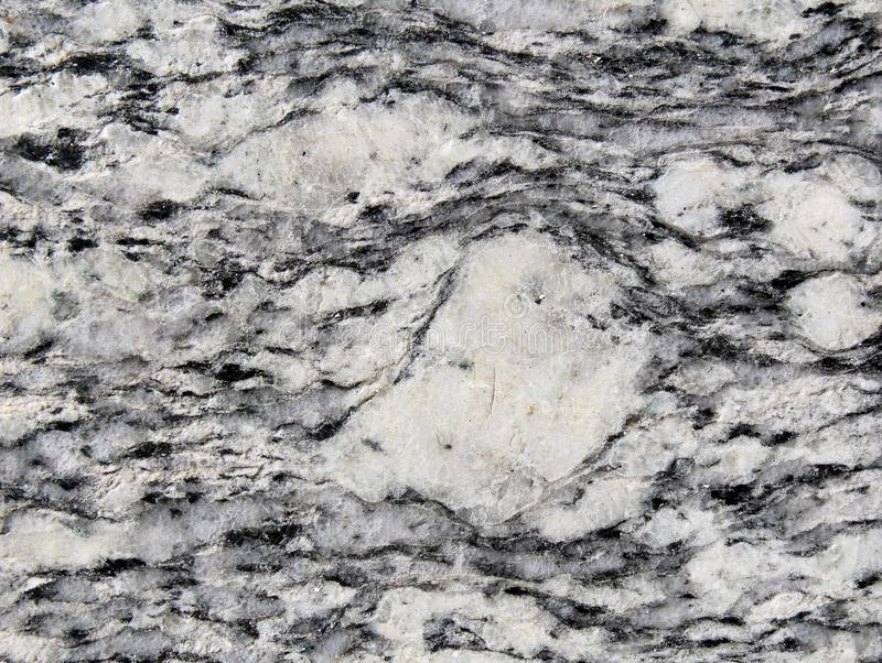 Porphyroclast surrounded by foliation in metamorphic rock royalty free stock images