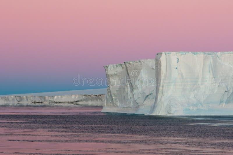 Porpora Polare Fotografia Stock