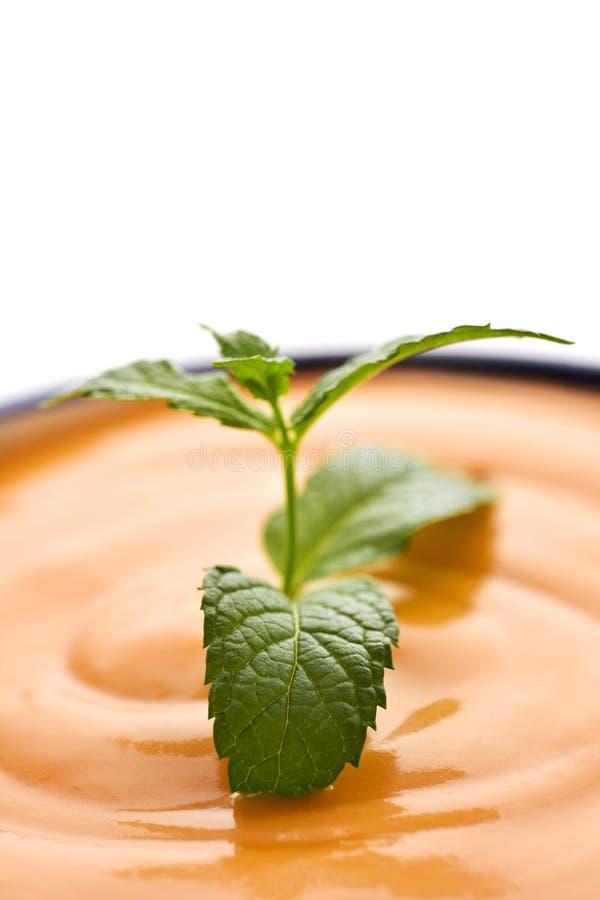 Porra antequerana, pomidorowy zupny jednakowy gazpacho obraz royalty free