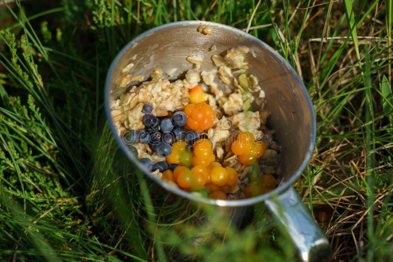 Porridge d'acciaio della farina d'avena della tazza con le bacche ed il mirtillo sull'erba fotografia stock libera da diritti