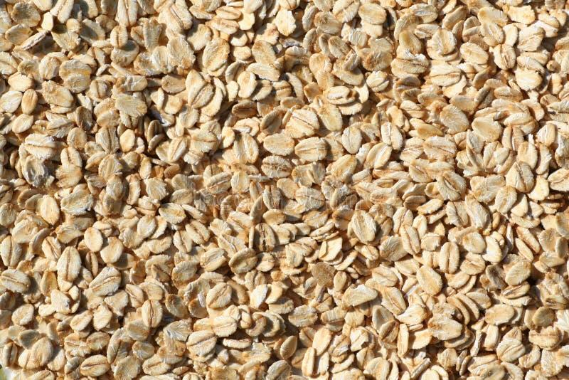 Porridge oats texture background. royalty free stock photography