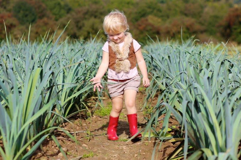 Porro divertente di raccolto della ragazza del bambino in età prescolare nel campo immagini stock libere da diritti