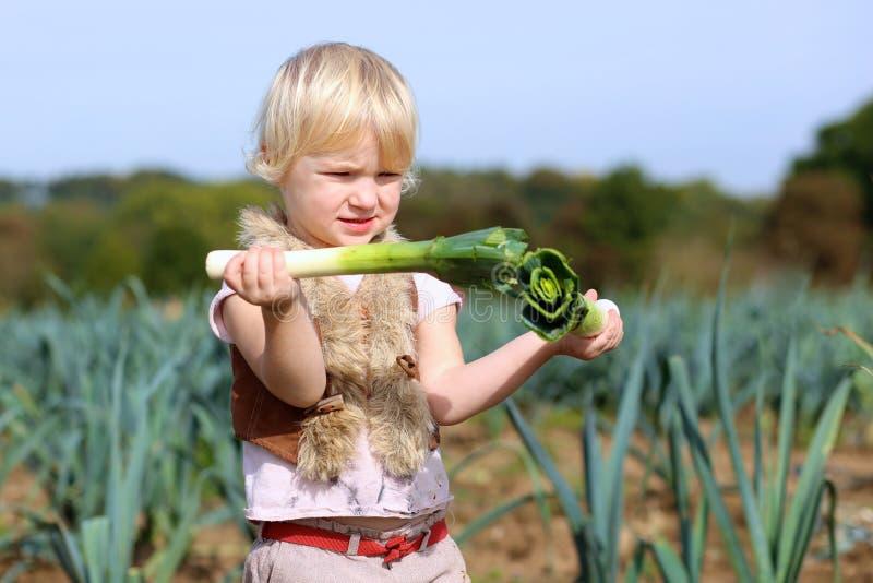 Porro divertente di raccolto della ragazza del bambino in età prescolare nel campo fotografie stock libere da diritti