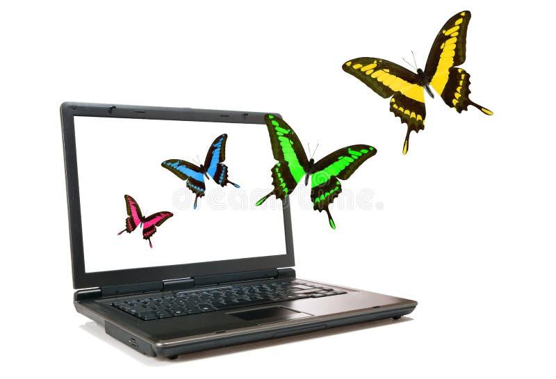 Portátil e borboletas imagens de stock
