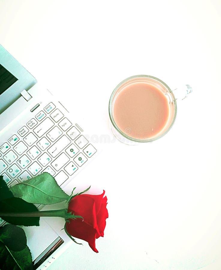Portátil e cupofcoffee brancos foto de stock