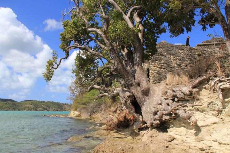 Port Antigua Barbuda de rue Johns de James de fort image stock