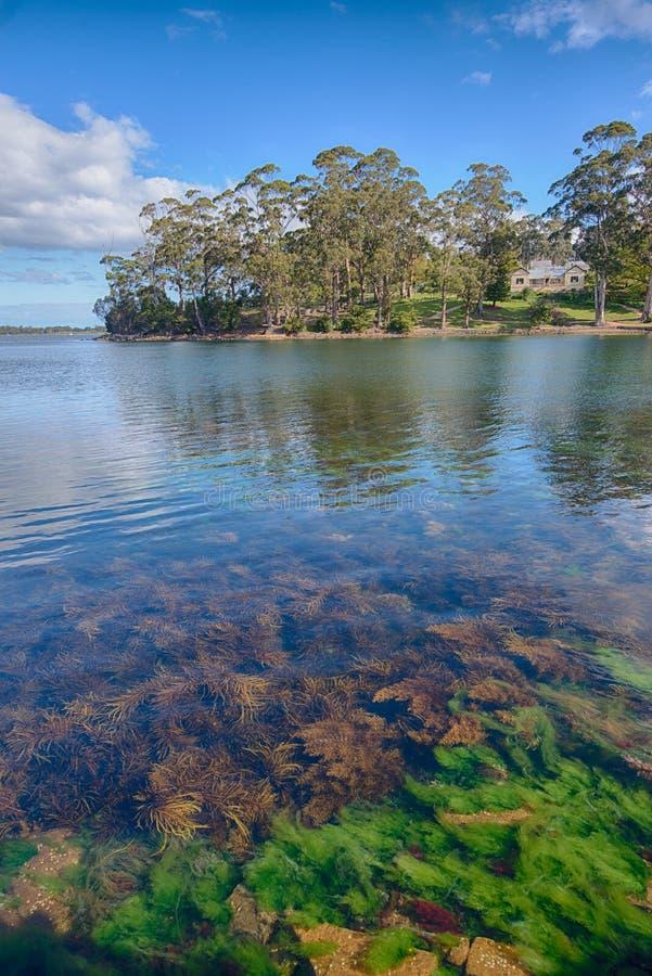 The Port Arthur seaweed lake stock image