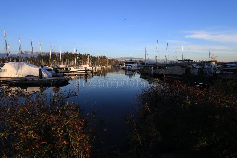Port av Stanley Park i Vancouver fotografering för bildbyråer