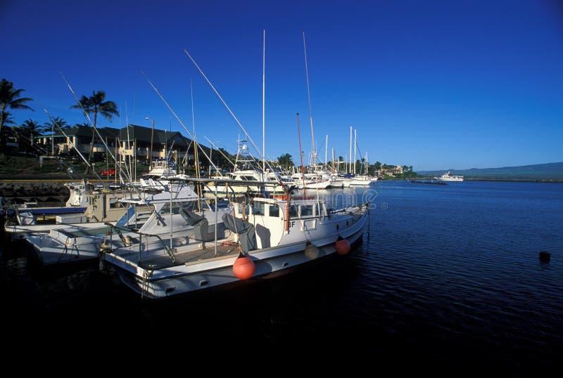 Port chez Hawaï images stock