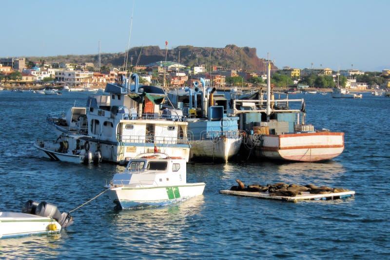 Port con le barche, Puerto Baquerizo Moreno, San Cristobal, isola di Galapagos fotografia stock libera da diritti