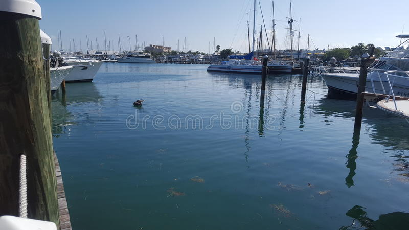 Port d'ab photo stock