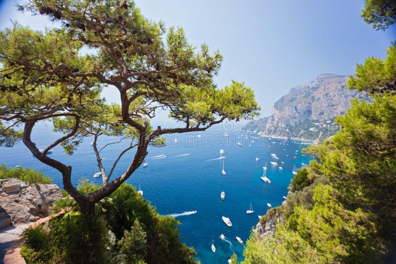 Port de Capri images libres de droits