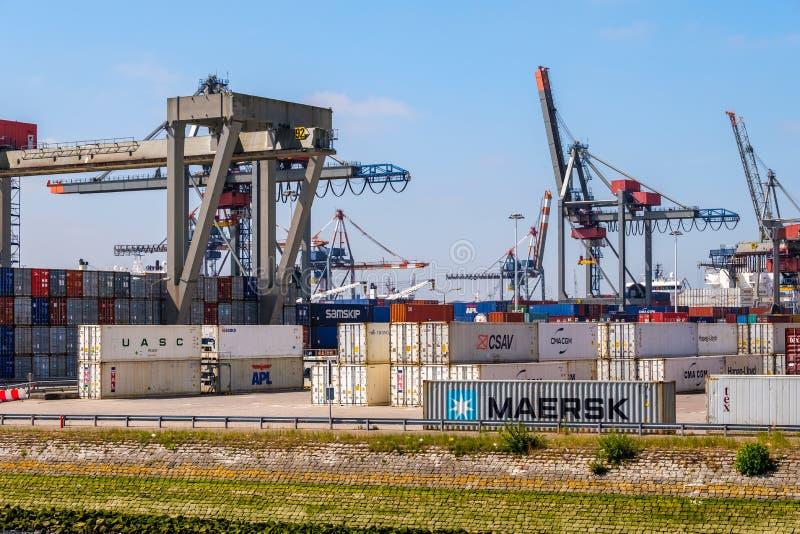 Port de Rotterdam de terminal de récipient images stock