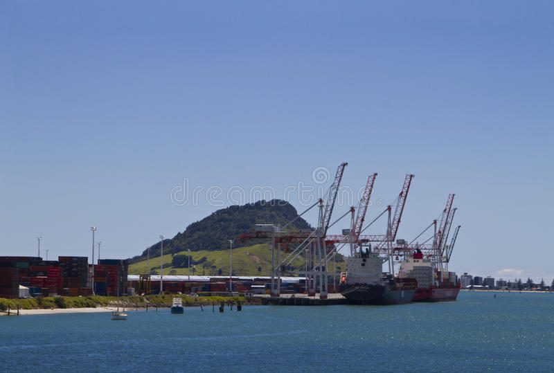 Port de Tauranga photographie stock libre de droits