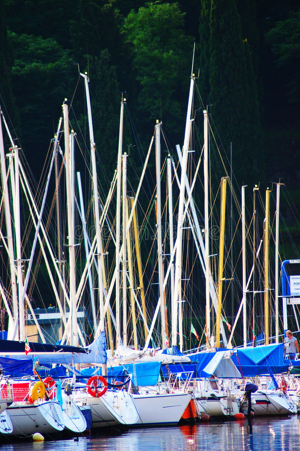 Port, detail of boats and masts