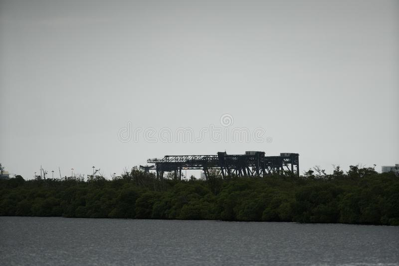 Port Everglades cargo loading cranes with trees in foreground royalty free stock images