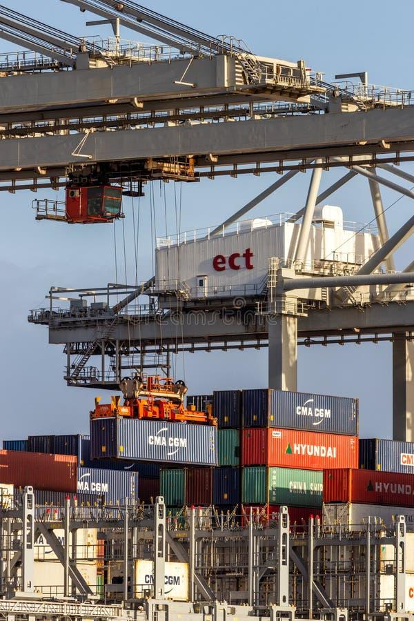 Port för behållare för hav för lastningsbryggakran slutlig royaltyfri fotografi