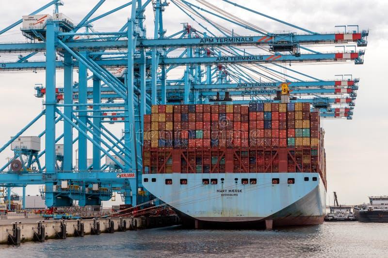 Port för Maersk behållareskepp av Rotterdam arkivfoto