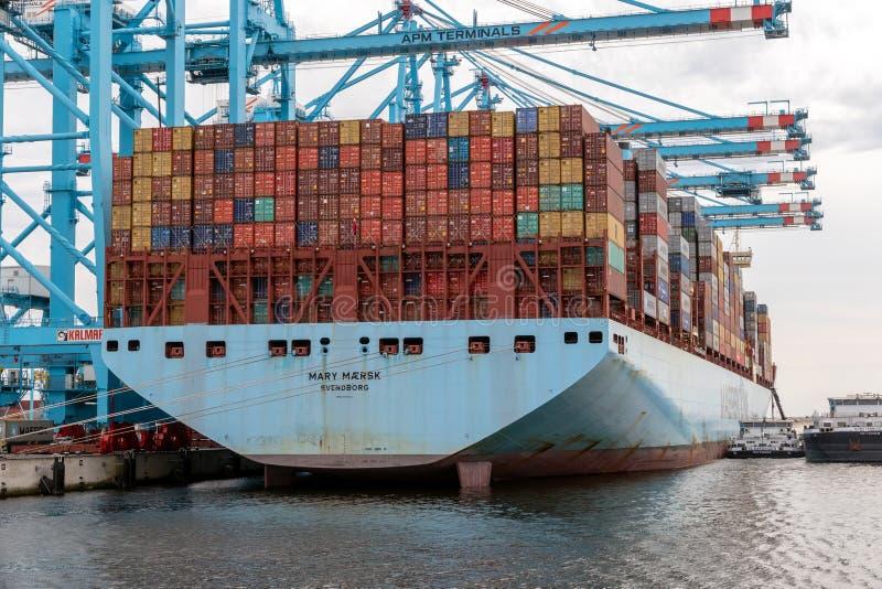 Port för Maersk behållareskepp av Rotterdam royaltyfri fotografi
