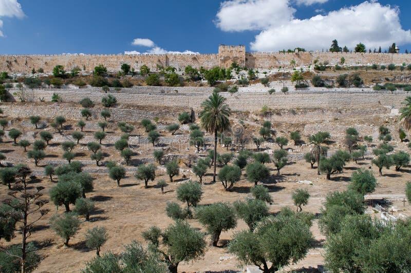 port guld- jerusalem till royaltyfri bild