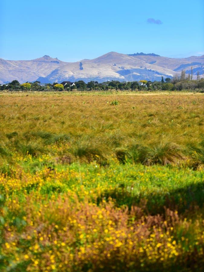 Port Hills según lo visto de Travis Wetland Nature Heritage Park en Nueva Zelanda fotografía de archivo
