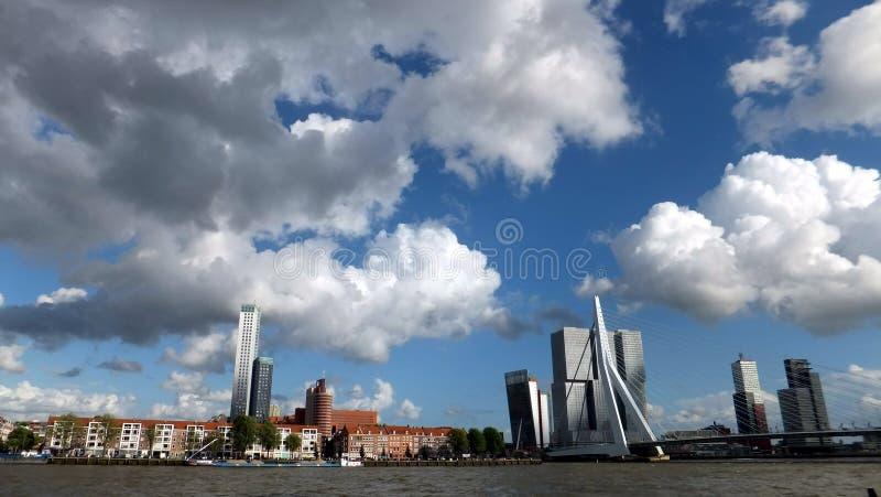 Port i Rotterdam, Nederländerna royaltyfria foton